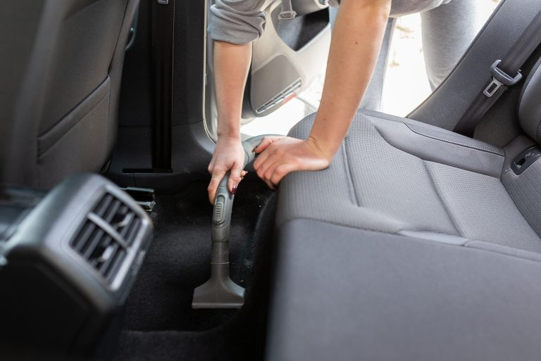 Ants in Car: How to Get Rid of Ants in Your Car